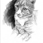 """Bhakti"" Pet Portraits In Charcoal"