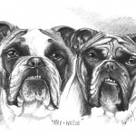 """Max & Willie"" Pet Portraits In Charcoal"