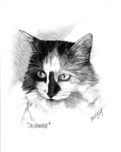 """Savannah"" Pet Portraits In Charcoal"