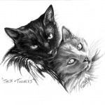 """Jack & Toonces"" Pet Portraits In Charcoal"