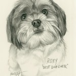"""Roxy"" Pet Portraits In Charcoal"