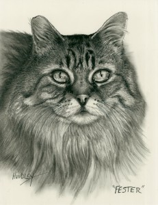 """Fester"" Pet Portraits In Charcoal"