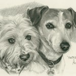 """Hunter & Augie"" Pet Portraits In Charcoal"