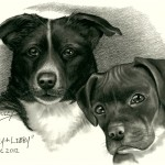 """Lucy & Libby"" Pet Portraits In Charcoal"