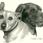 """Sadie & Chelsea"" Pet Portraits In Charcoal"