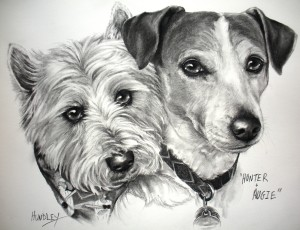 """Hunter & Augie #2"" Pet Portraits In Charcoal"
