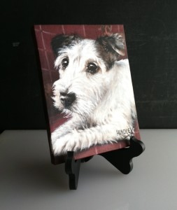 "Smudge 6"" x 8"" Table Top Display"
